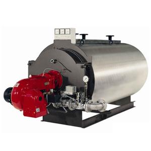 Steam boilers Kolvi HS